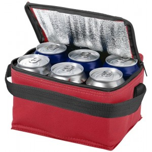 Spectrum 6-can cooler bag