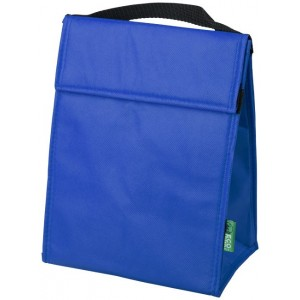 Triangle cooler bag