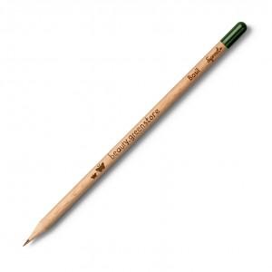 Crayon sprout  Multicolor...